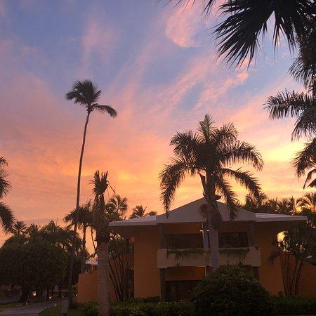 Iberostar Dominicana Hotel: Iberostar Dominicana Mai 2018 Beautiful Beach, nice Fruits, Palmtrees, great People, love this p