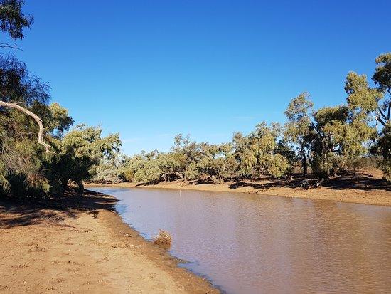 Cunnamulla, Austrália: Lagoon a few km away