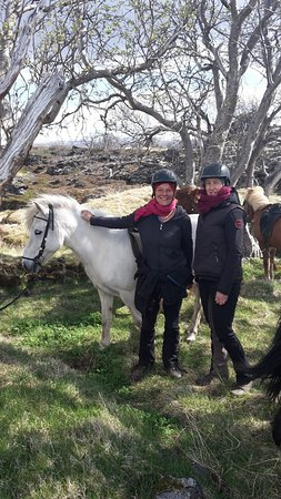 Lava Horses : Break under trees
