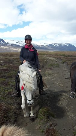 Lava Horses : near the river