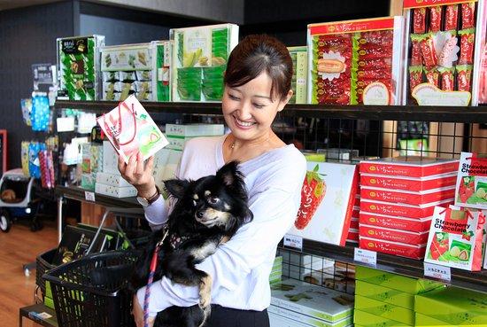 愛犬の駅, おやつやおもちゃ、海外メーカーのオシャレで機能的なリードやウェアなども揃えております。