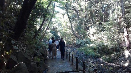 Todoroki Valley Foto