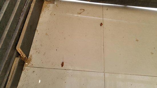Nahalat Yehuda Residence: Floors