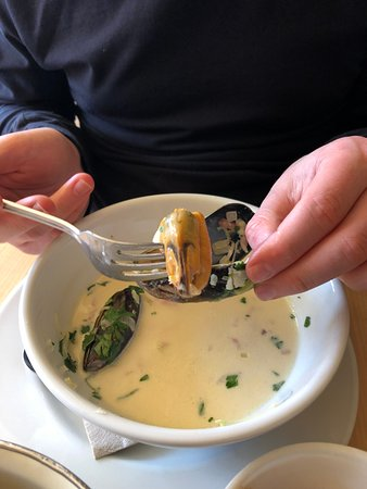Moules a Go-Go: huge mussels!