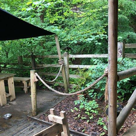 Falling Foss Tea Garden and Waterfall Foto