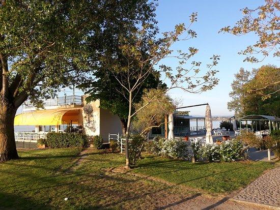La Pigra Tinca: Il giardino esterno