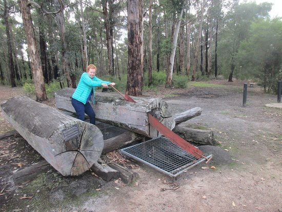 Manjimup Heritage Park: More of the attractions