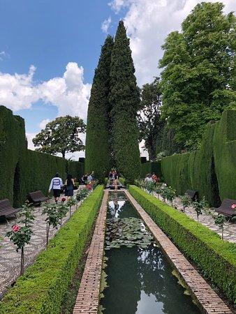 อัลฮัมบรา: Alhambra gardens