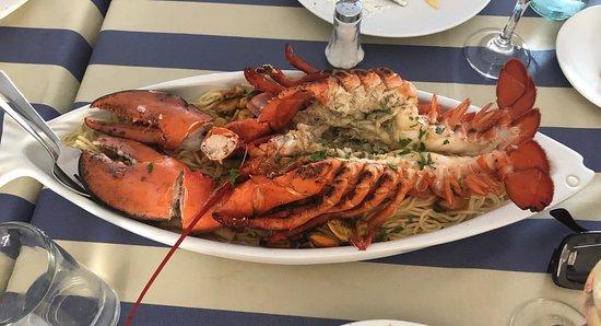 Caravelle Fish & Mediterranean Restaurant: Вкуснейший омар