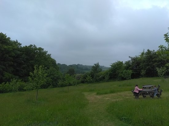 Drewsteignton, UK: Picnic Area