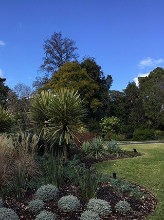 墨尔本皇家植物园照片