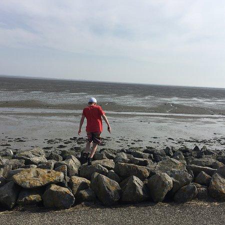 Fryzja, Holandia: photo6.jpg