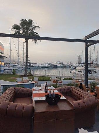 Qualista Restaurant Marina Photo