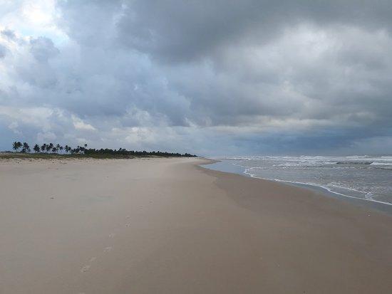 Ilha de Comandatuba照片