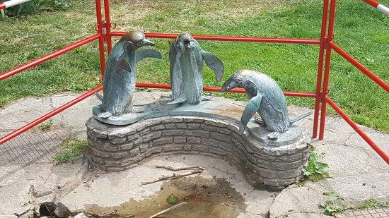 Vogeltranke Pinguingruppe
