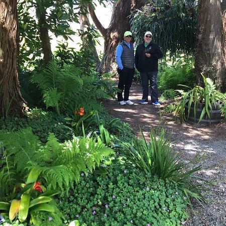 Mendocino Coast Botanical Gardens ภาพถ่าย