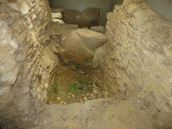 Etruscan necropolis of Prato Rosello