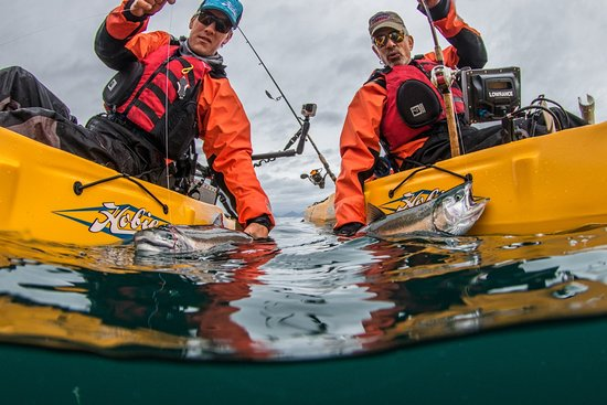 Gray Light Seward Alaska: Non-stop action for silvers from the kayaks, on the fishing grounds via the Gray Light as mother