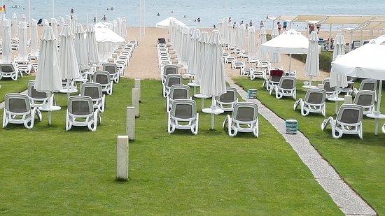 Q Beach Restaurant & Lounge: Strand mit Rasen / Sand