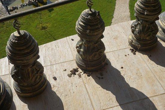 Hotel Golden Place: Balkon ohne Möbel, mit Tierexkrementen
