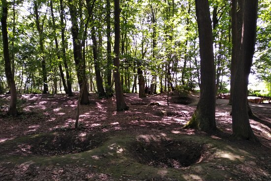 Sanctuary Wood: Pockmarked by artillery