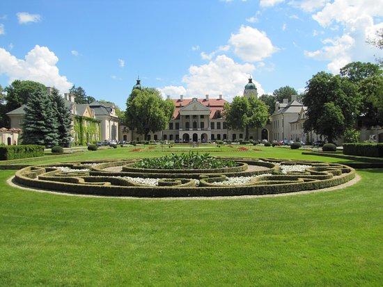 Zamoyski Palace Museum: Pałac - widok z frontu