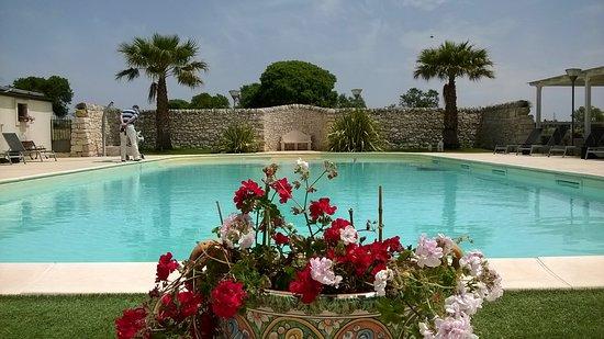 Artemisia Resort : heerlijk zwembad wat geweldig schoon werd gehouden