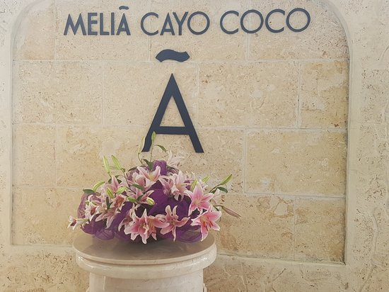 Melia Cayo Coco照片