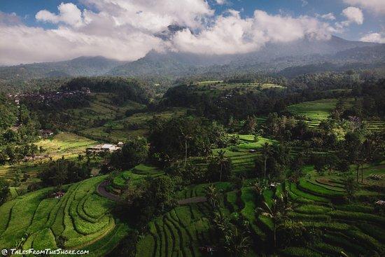 Bali Blest Tours
