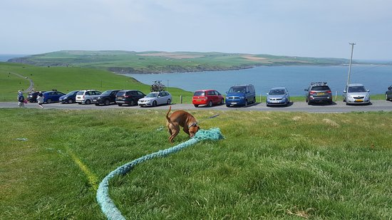 Mull of Galloway, UK: Just some of the parking, bigger car park further up.