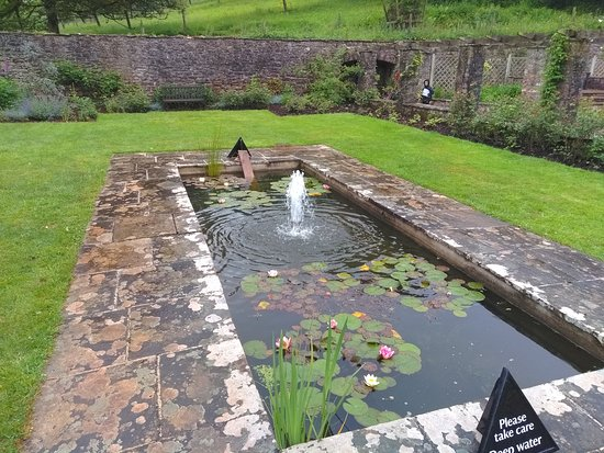 Compton Castle: Water feature