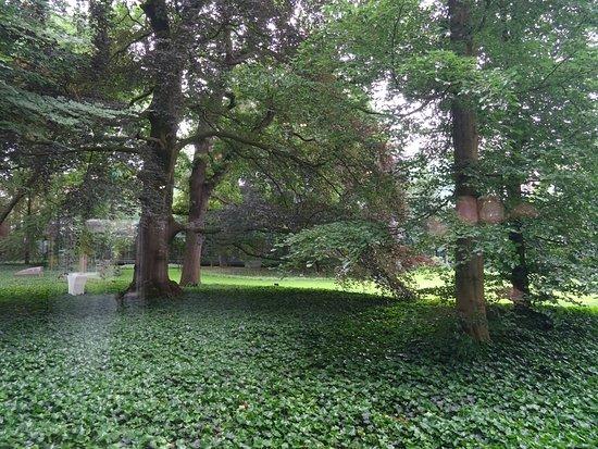 Noordbrabants Museum: tuin;Noord Brabants Museum Den Bosch