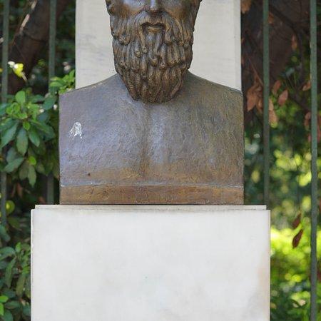 CATTaxi ภาพถ่าย