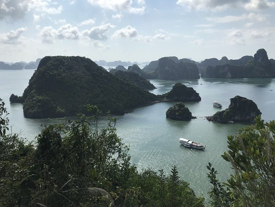 Hera Cruise - Private Day Cruise: 郵輪導覽 Bai Tu Long Bay 山頂的景觀