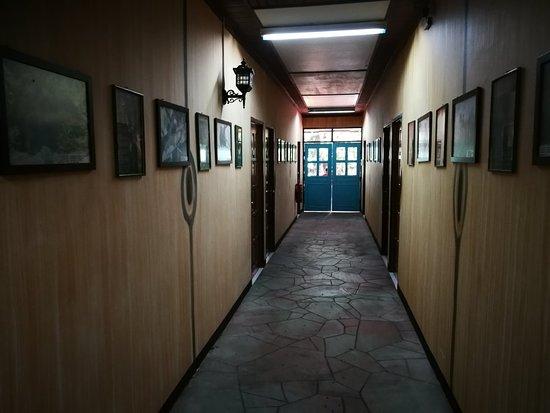 Sepilok Jungle Resort: IMG_20180529_135524_large.jpg