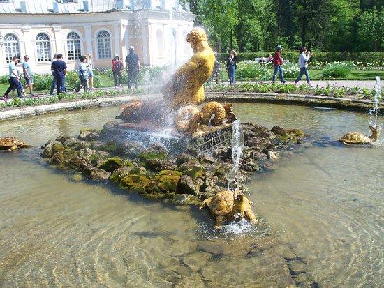 พระราชวังและสวนปีเตอร์ฮอฟ: fontana