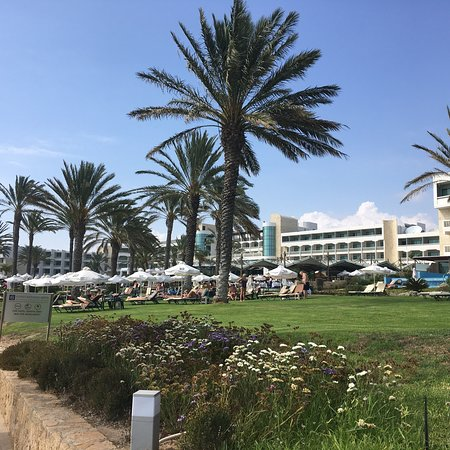 Constantinou Bros Athena Beach Hotel Photo