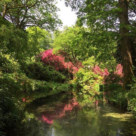 Ramster Gardens Fotografie