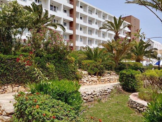 Mellieha Bay Hotel: Hotel grounds
