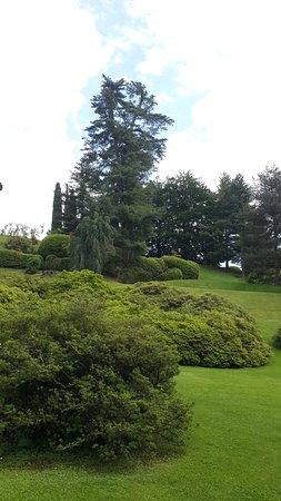 i Giardini di Villa Melzi: ...