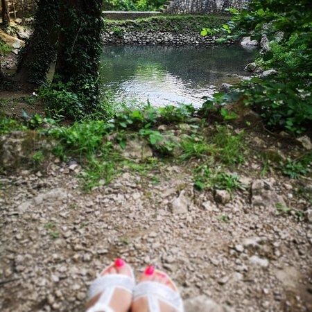 Cipresseta di Fontegreca: Cipresseta