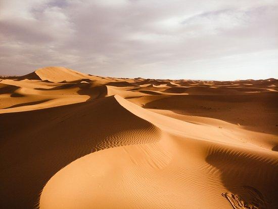 写真Top Desert枚