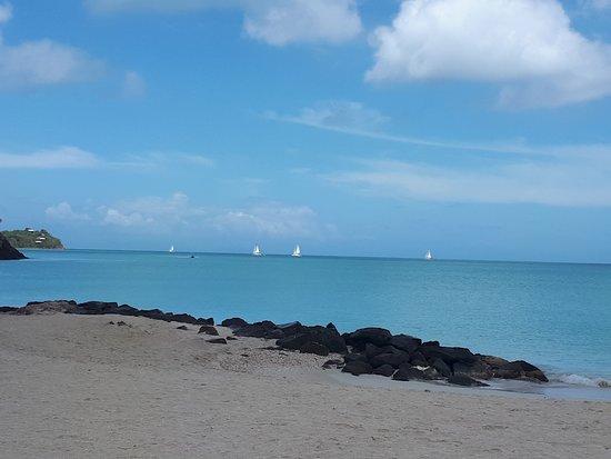 Starfish Jolly Beach Resort : Sailing is big in Antigua
