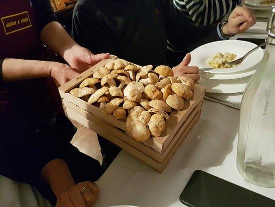 Agriturismo San Polo: i Funghi freschi