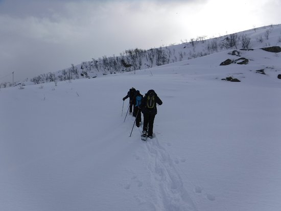 The Green Adventure: Snowshoeing!
