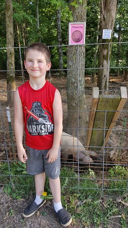 Christian Way Farm & Mini Golf: Sam meets Peppa the Pig.