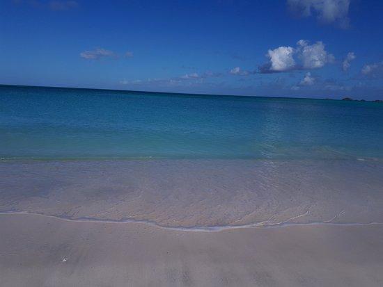 Starfish Jolly Beach Resort: More of the beautiful beach