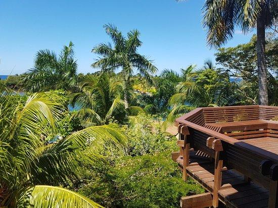 Anthony's Key Resort照片