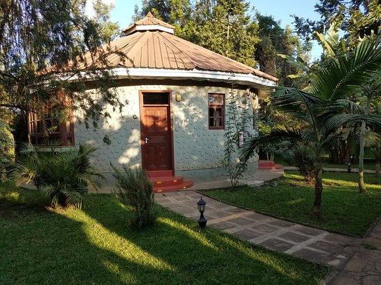 Arusha Planet Lodge: 20180603_072532_large.jpg