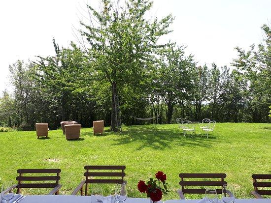 Cascina Cerola Farm Stay : giardino esterno